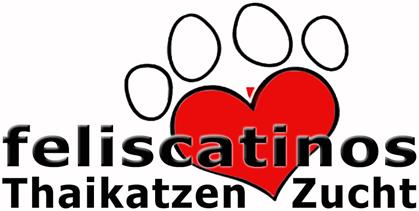 Thai Katzen Zucht Feliscatinos